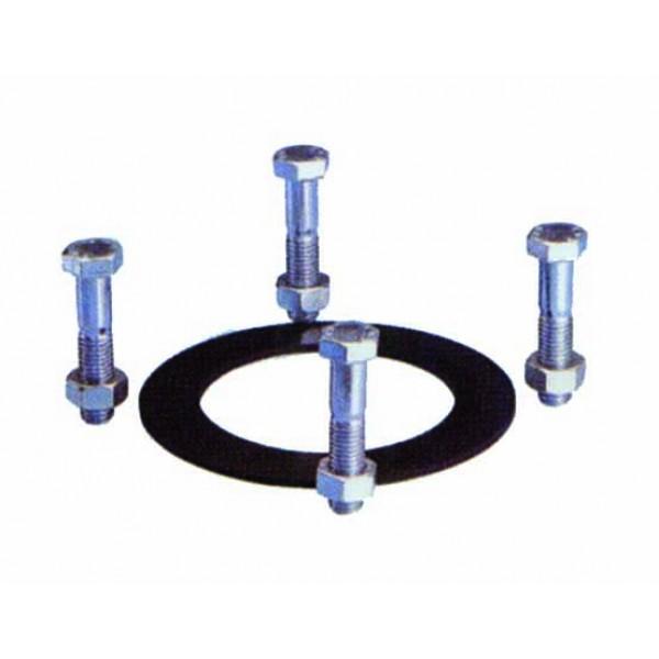 Guarnizione e serie bulloni in acciaio zincato per idrante dn 50 (n. bulloni 4)