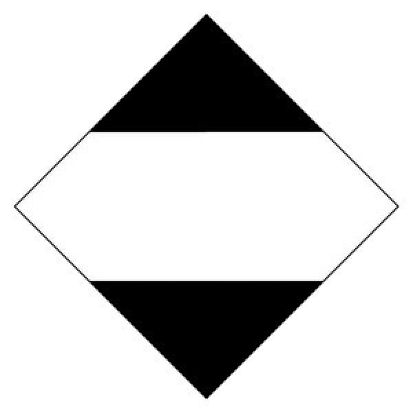 Etichetta autoadesiva formato 100x100 mm q.ta' limitate adr 2011 cl.9