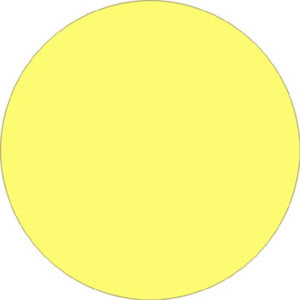 Etichetta autoadesiva diametro mm 45 luminescente (l1840a)