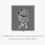 Comando delle Forze Operative Terrestri di Supporto